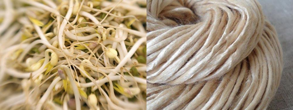 fibra de soja en ropa interior julia