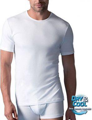 Camiseta Manga corta algodón Abanderado